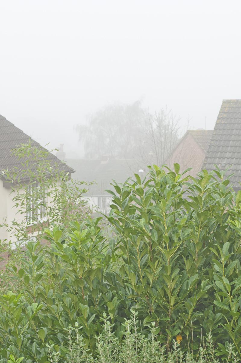 misty view2_72
