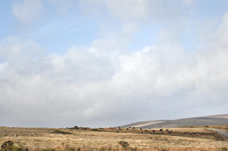 0559_dartmoor sky_dodge_72