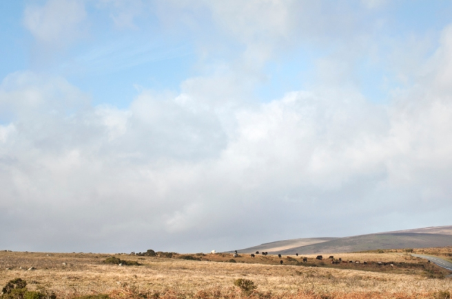 0559_dartmoor sky_dodge_72