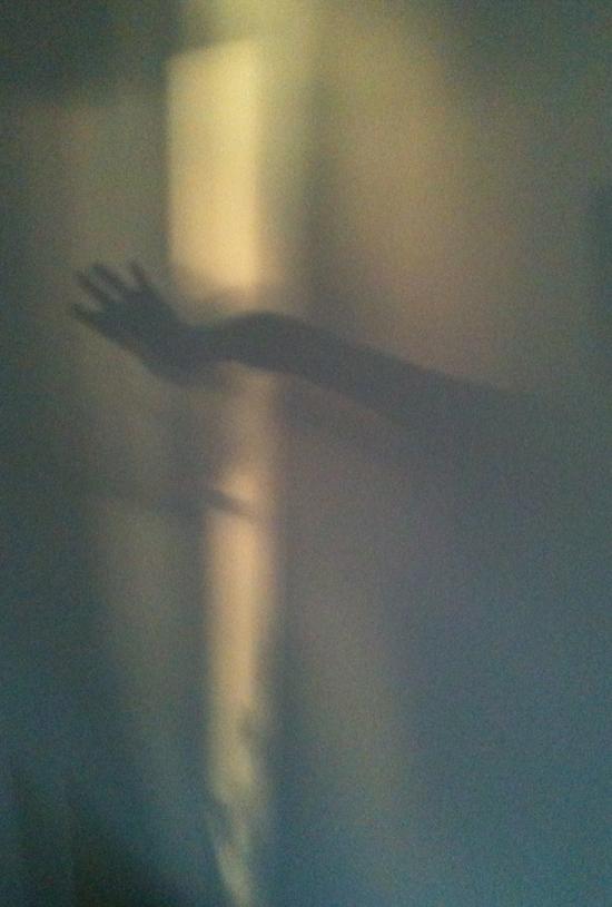 1018_shadow hand