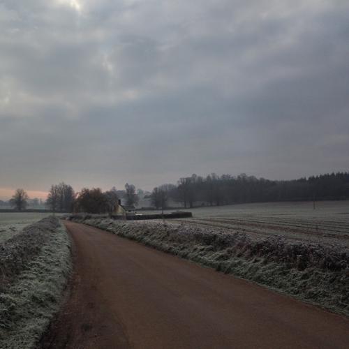 2282_white morning_dodge_c_72