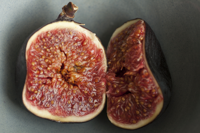 figs hugging